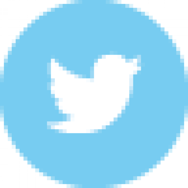 color-twitter-48.png