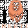 Lion HDB's picture